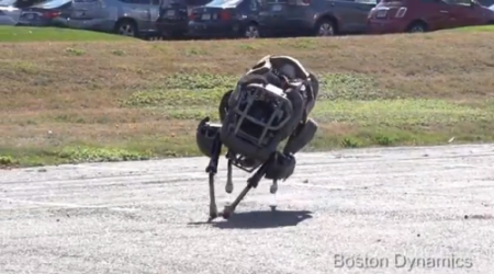 Boston-Dynamics-wildcat-09-500x278
