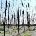 Une forêt de poils géants pour remplacer les éoliennes ?