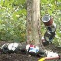 Un robot serpent capable de grimper aux arbres